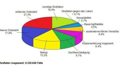 Die Polizeiliche Kriminalstatistik